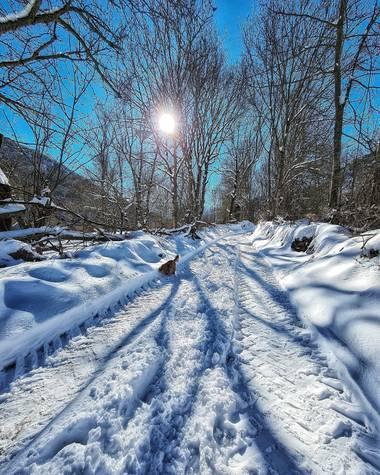 Marijohz en Hamelin: Paisaje  (Ezcaray), Sombras en el camino #invierno20