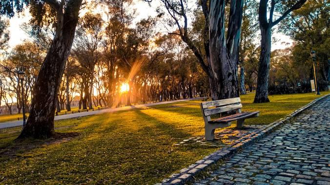 nestor.rivero2002 en Hamelin: Paisaje  (Palermo), Amanecer en los bosques de palermo- CABA(Ciudad Autónoma de Buenos Aires) #hamelinice20  #goodlife  #arge...