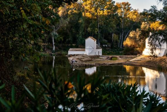 pablophoto81 en Hamelin: Paisaje  (Alcalá de Guadaíra), Parque Guadaira, Alcalá de Guadaira, Sevilla  #parquesyjardines #paisajes #landscapes #andalucia #a...