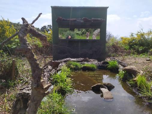 Eduardovilchesbenitez15 en Hamelin: Fotografía Naturaleza. - Proyecto
