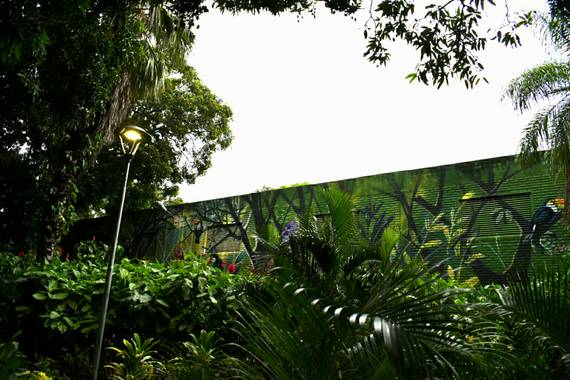 Efyl en Hamelin: BOLIVIA Natural - Proyecto  (Guarayos)