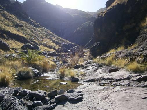 Maui346 en Hamelin: agaete - Proyecto  (Las Palmas)