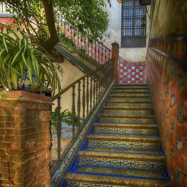 MargaritaLozano en Hamelin: Patrimonio + Naturaleza - Proyecto  (Jerez de la Frontera)