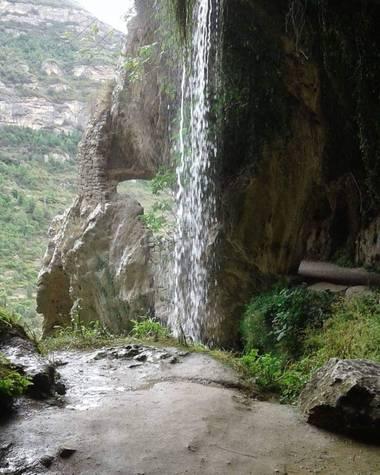 busquetsc en Hamelin: Naturaleza Cataluña - Proyecto  (Jorba)