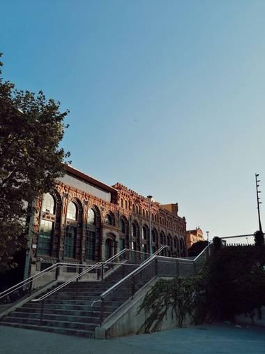 Vidaamusa en Hamelin: Punto de fuga - Proyecto  (Barcelona)