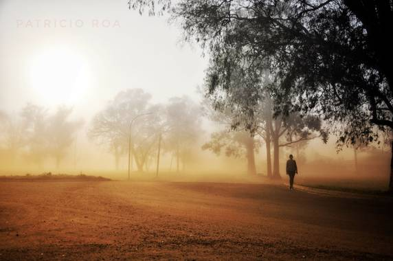 patoroa17 en Hamelin: La Neblina - Proyecto  (Federal)