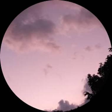 Usuario en Hamelin: stellazumbado - Usuario  (Costa Rica )