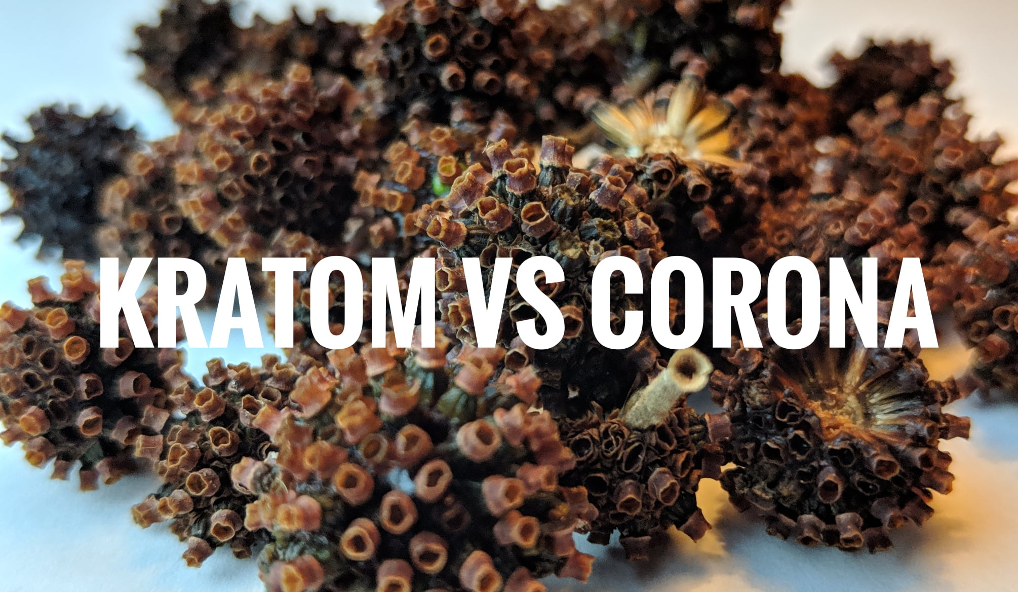 How kratom can help with Corona Virus?