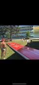 Bilde for Sommercamper hos Drammens Turnforening 2021