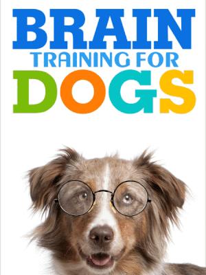 Braintraining4dogs