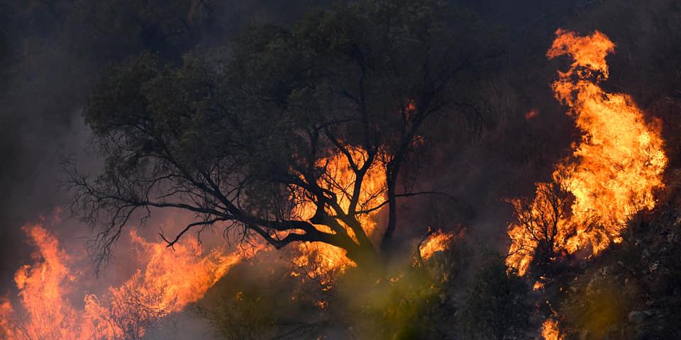 Imagen de la nota 'Los dueños del fuego parte II'