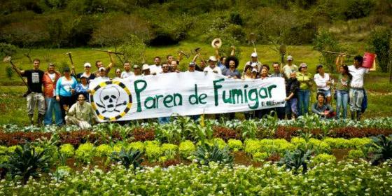 el-modelo-produccion-agropecuario-argentino-problema-salud-publica