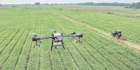 Picture principal - Cumbre de Sistemas Alimentarios, nuevas tecnologías y el agronegocio recargado