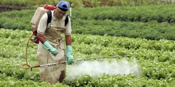 Imagen de la nota 'La Sociedad Argentina de Pediatría confirmó el daño de los agrotóxicos en niños'