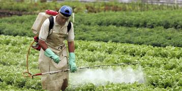 """Imagen de la nota 'La mentira de las """"buenas prácticas agrícolas""""'"""