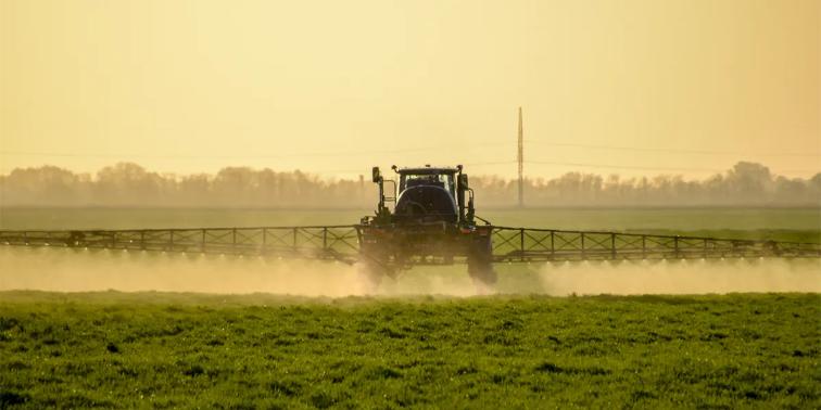 Picture principal - Microplásticos y herbicidas: Juntos es peor