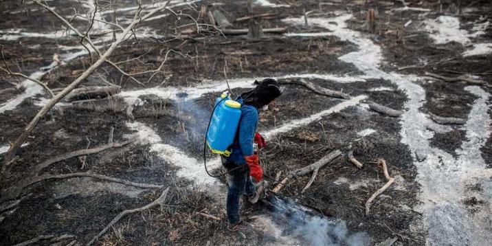 Imagen de la nota 'Desastres ambientales: Las causas de las pandemias se profundizaron'