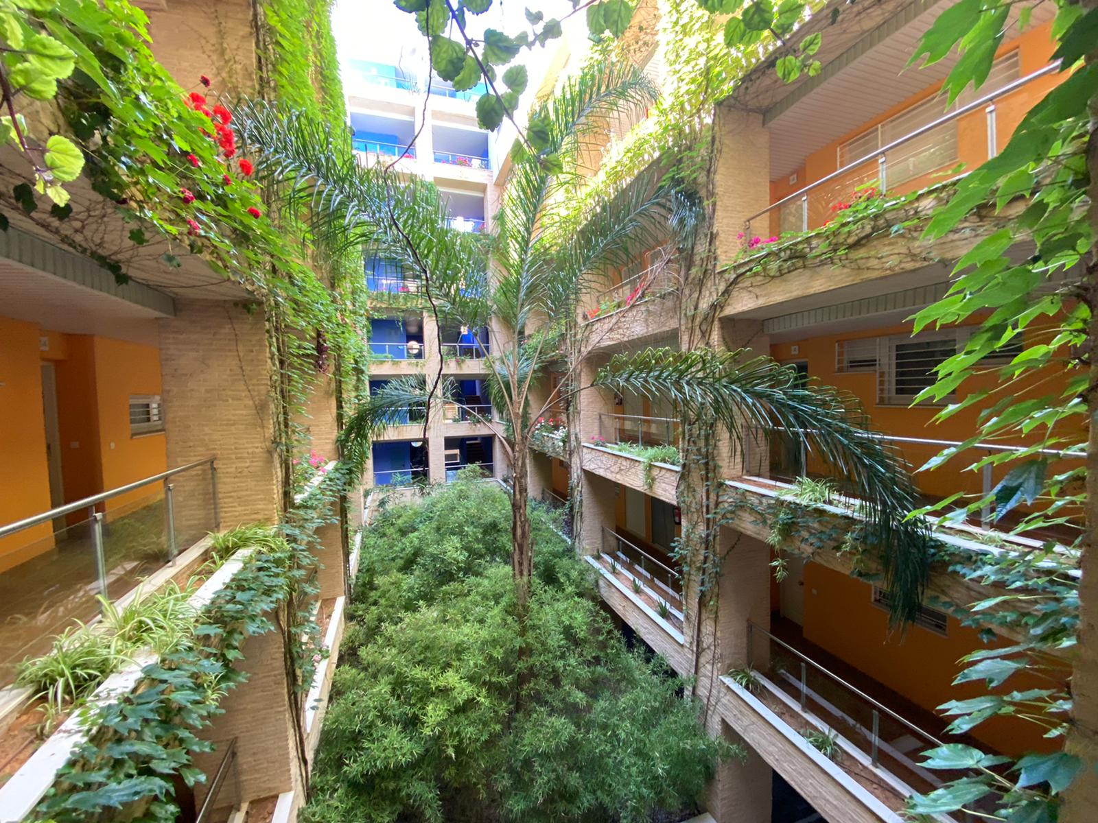 Imagen 33 del Apartamento en El Espigón, 1ª Planta nº4 Poniente (3d+2b), Punta del Moral (HUELVA), Paseo de la Cruz nº22