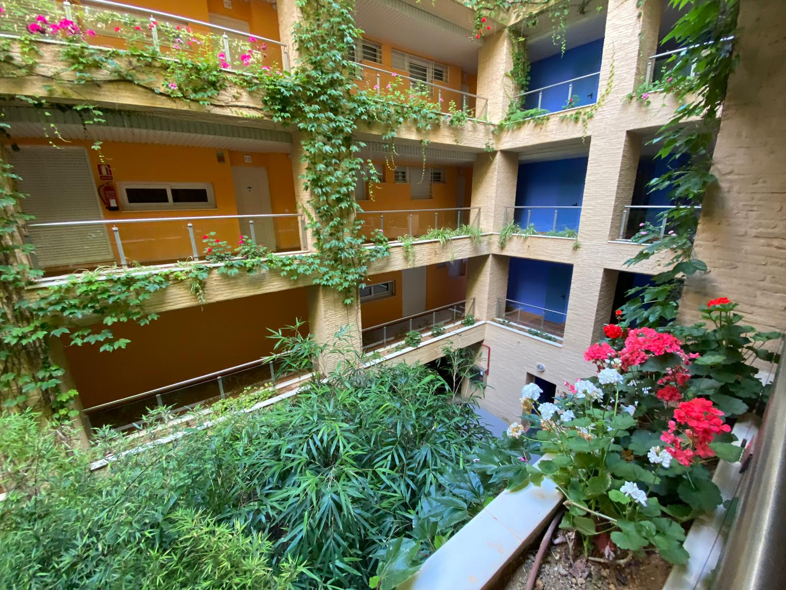 Imagen 32 del Apartamento en El Espigón, 1ª Planta nº4 Poniente (3d+2b), Punta del Moral (HUELVA), Paseo de la Cruz nº22