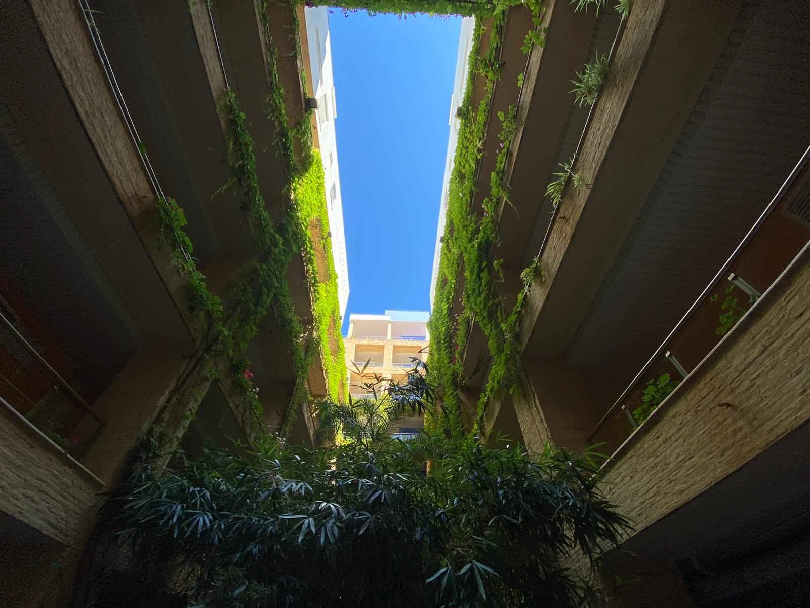 Imagen 31 del Apartamento en El Espigón, 1ª Planta nº4 Poniente (3d+2b), Punta del Moral (HUELVA), Paseo de la Cruz nº22