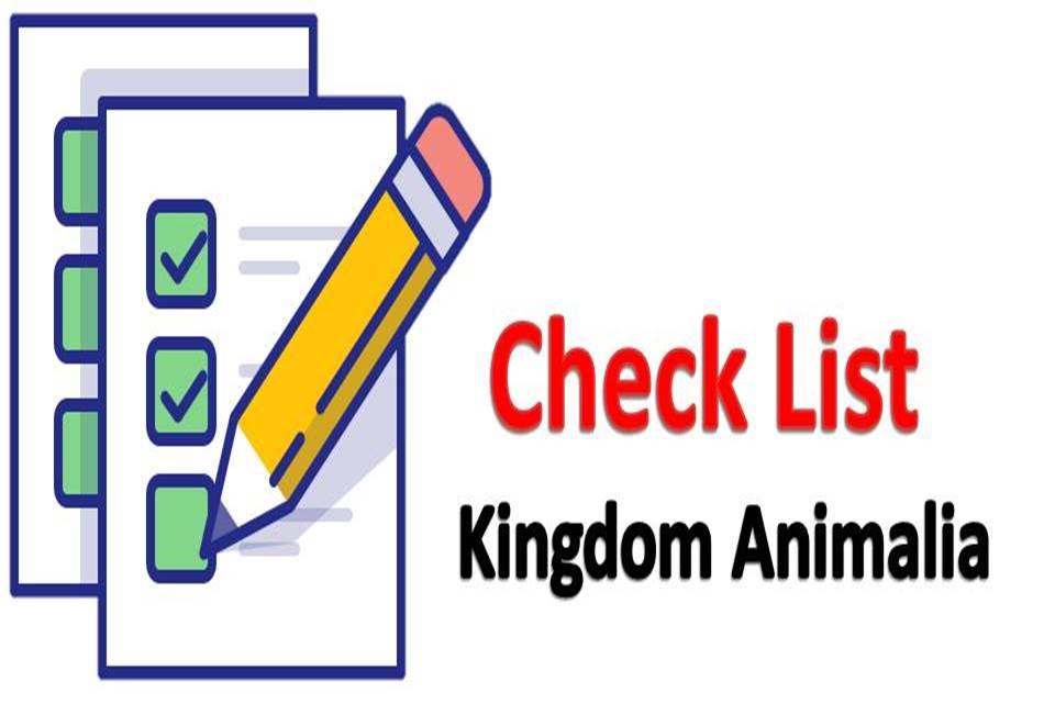 ภาพประกอบไอเดีย check list อาณาจักรสัตว์