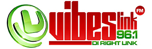 Image for Vibes Link FM 96.1