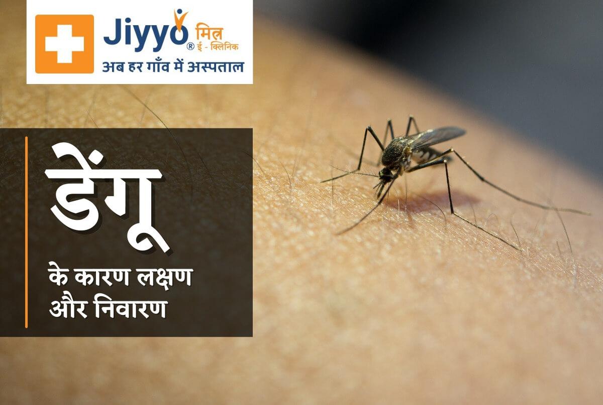 डेंगू के कारण लक्षण और निवारण