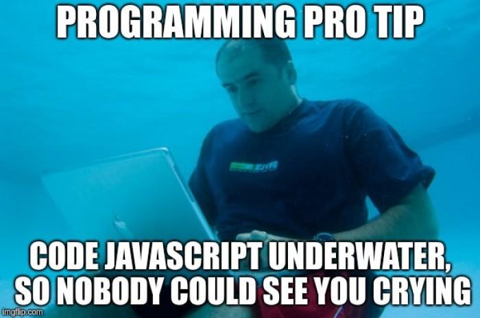 Fear JavaScript meme
