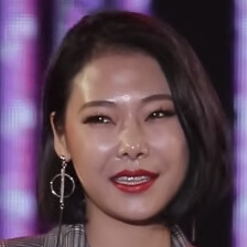 Cheetah: Profile, Age, Weight, Height, Facts | Hallyu Idol