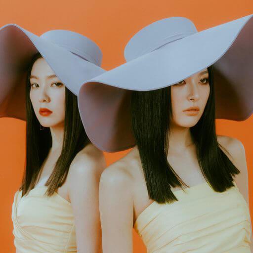 IRENE & SEULGI: Profile, Members, Facts, Debut, Positions | Hallyu Idol