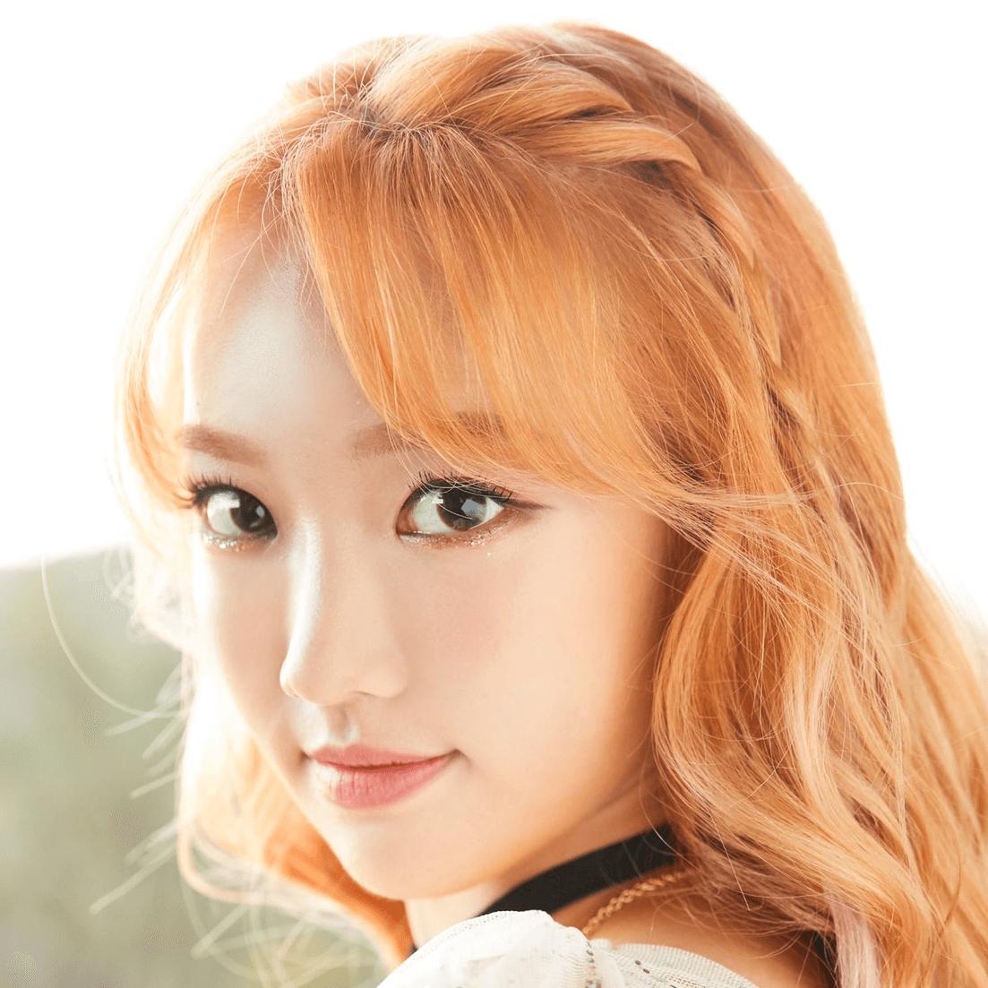 Sua: Profile, Age, Weight, Height, Facts   Hallyu Idol