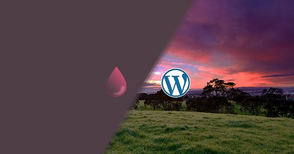Thumbnail - Membuat Efek Gambar Ngeblur (Bokeh) di Wordpress