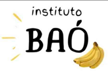 Instituto Baó