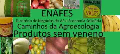 ENAF - Escritorio de Negocios da AF