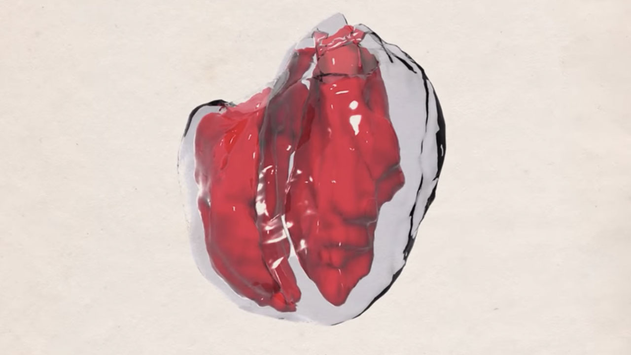 Alya Red: a computational heart