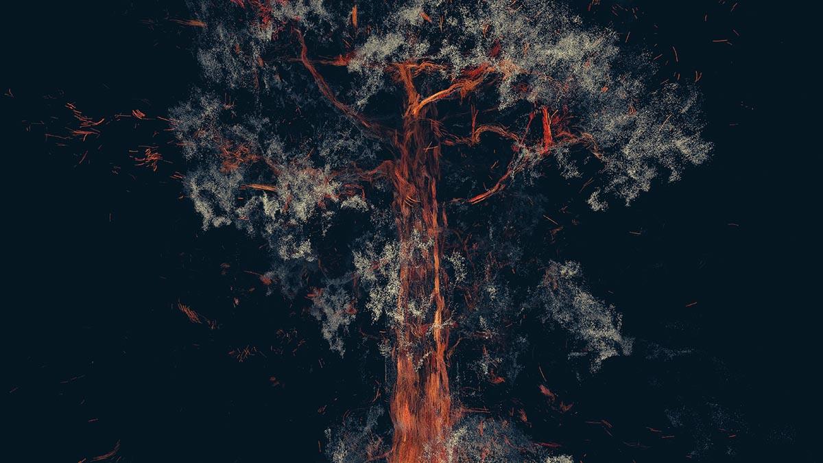 Treehugger: Wawona Teaser