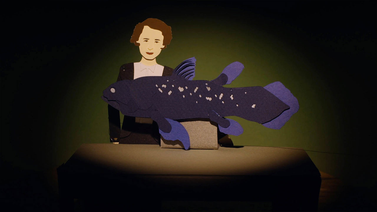 Animated Life: Coelacanth