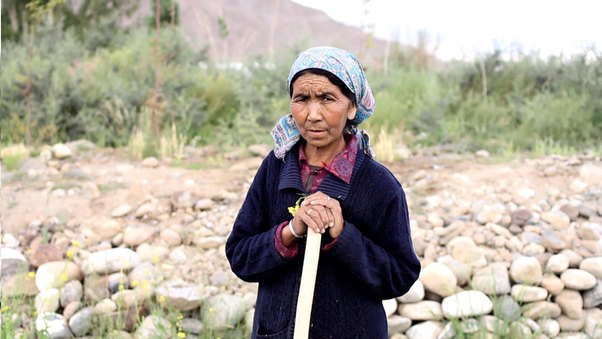 The Catalysts of Change: Adapting to changing weather in Ladakh