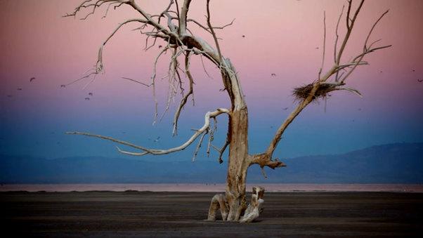 America's Dead Sea