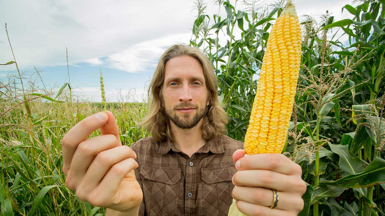 Popped Secret: The Mysterious Origin of Corn