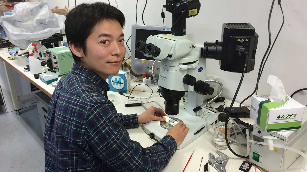 From the Kyoto Botanical Gardens to the Microscope