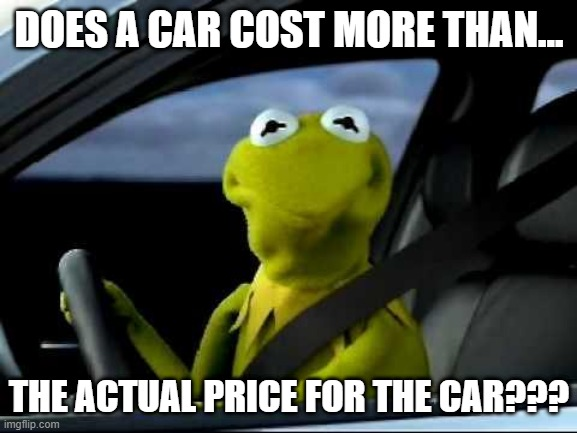 Kermit, the frog, in a car looking out the window asking: Does a car cost more than the actual price for the car?