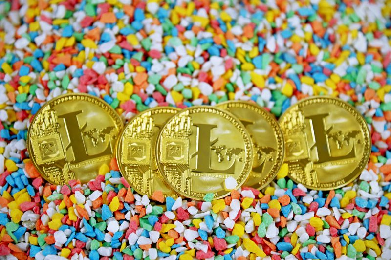 Litecoin on small colourful rocks