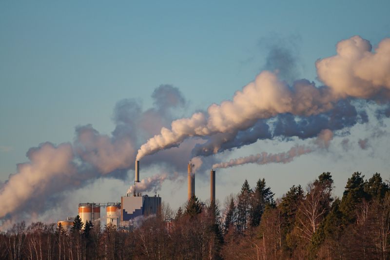 pollution from smokestacks in a forest