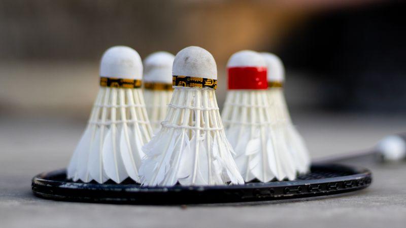 Shuttlecocks resting on a badminton racquet