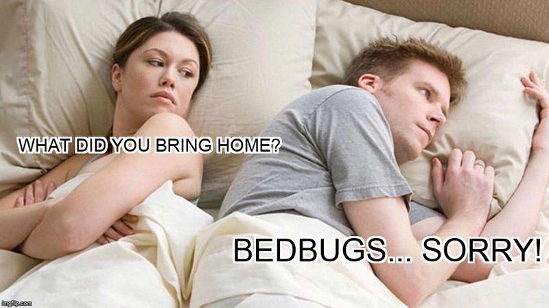 Angry Wife Meme-