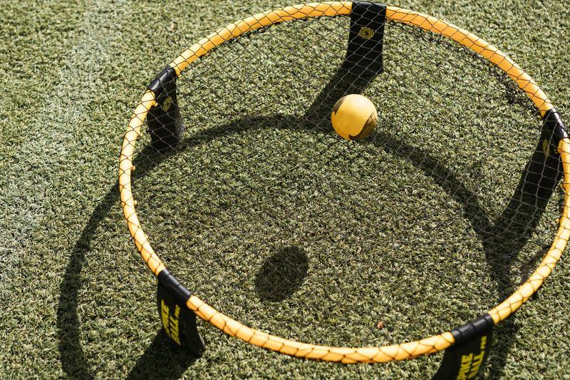 Spikeball net and ball