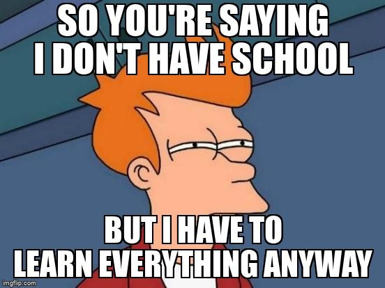 Meme: So you're saying I don't have school, but I have to learn everything anyway
