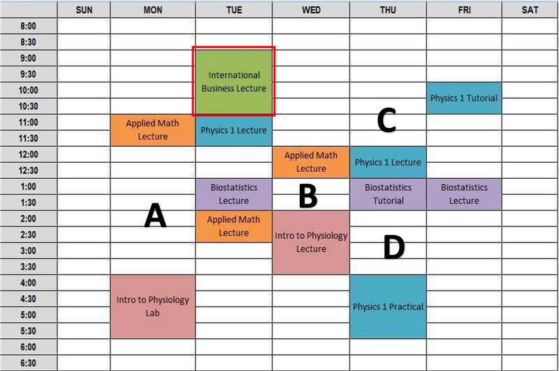 Kari's  Sample Schedule with colour coded lessons and classes spread out from Monday to Friday.