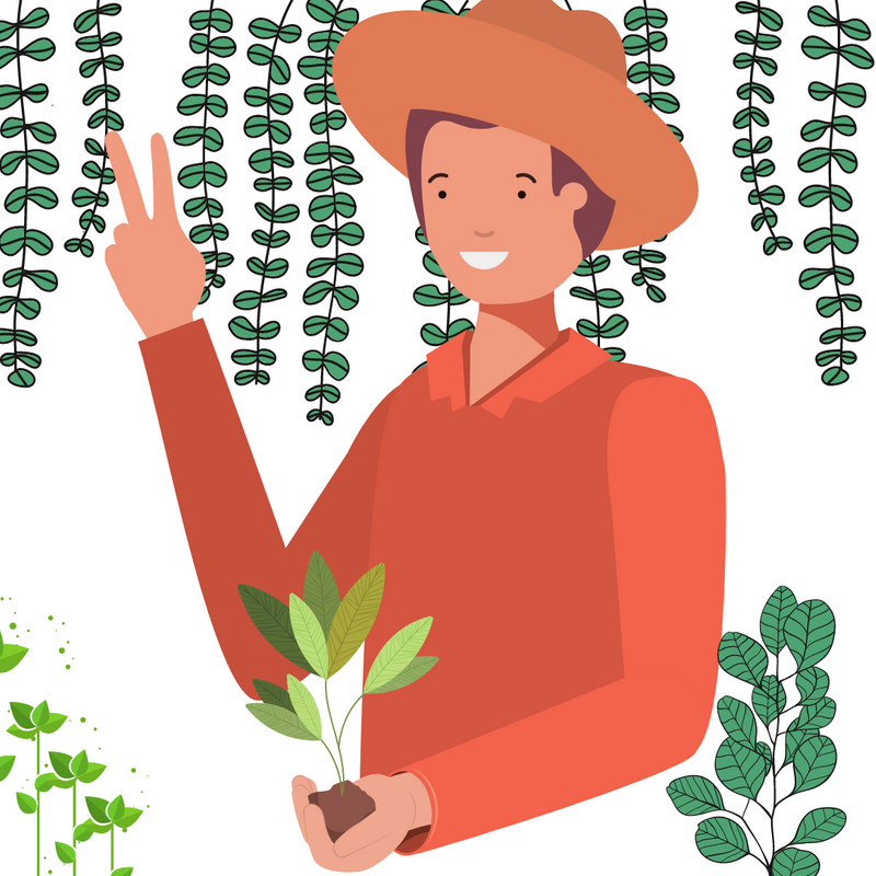 Graphic image of man with farmer's hat, holding plant, giving peace sign with plants in background.
